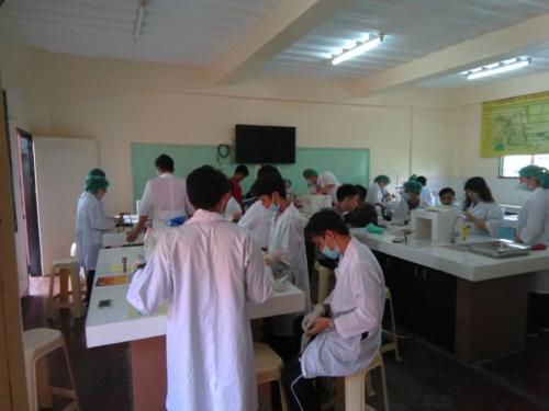 PNJK-IS Senior High School (11)